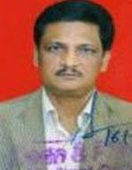 Prof. Dr. Pankaj Parida